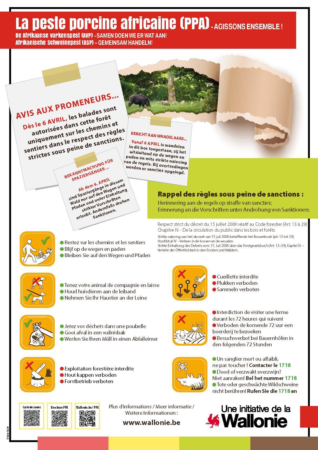 Affiche PPA avec les consignes pour les promenades en foret dans le sud de la Wallonie