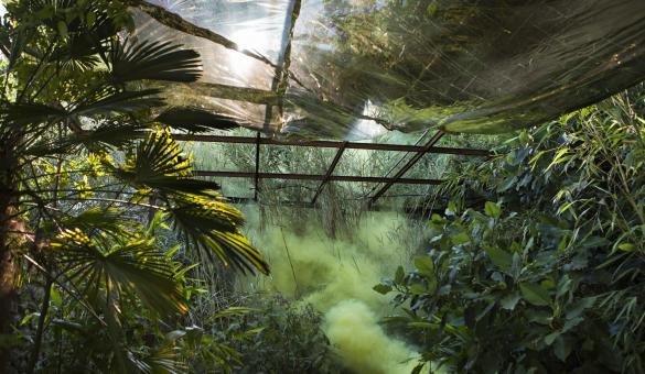 BIP - Biennale de l'Image Possible