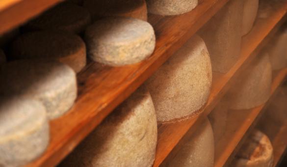 Venez découvrir la fromagerie du Gros Chêne à Méan (Havelange), au cœur du Condroz