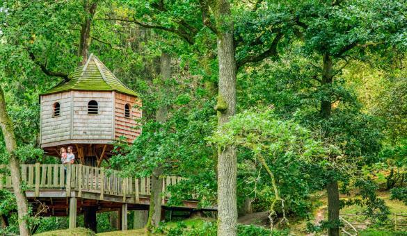 De hutten in de bomen van het Provincaal Domein van Chevetogne