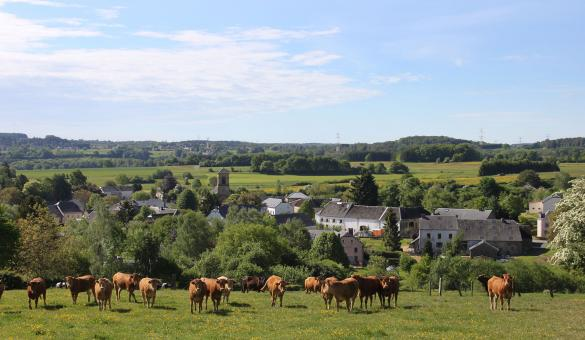 Les plus beaux villages de Wallonie - Nobressart