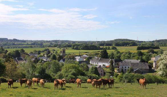 Les plus beaux villages de Wallonie - Nobressart