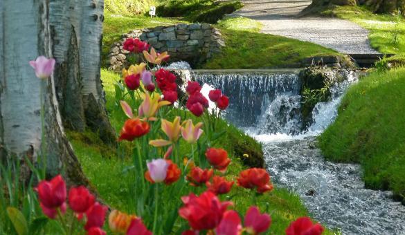 promenade - jardin - Annevoie - eau - fontaine - Belgique - Wallonie