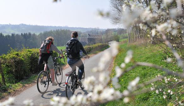 Bike ride - nature