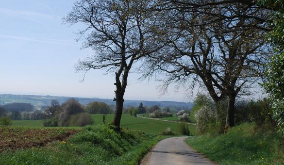 Balade - vélo - nature - Wallonie - - Rondeaux