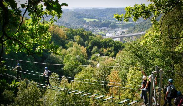 pont de singe dans un espace boisé à Dinant en Wallonie