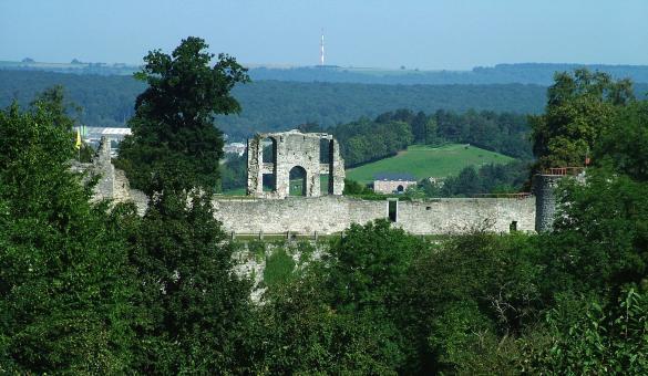 Château - Comtal - Rochefort - XIe - forteresse - Montaigu