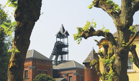 Bois Du Luc - Musée - Mine - Développement Durable