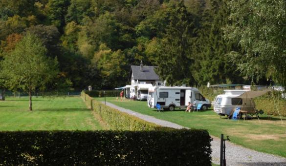 Camping - Bouleaux - Bohan - Ardenne méridionale