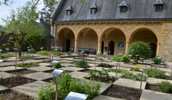 Découvrez le Jardin des plantes médicinales au Musée pharmaceutique de l'abbaye d'Orval