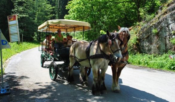Ardenne-trait gourmande - Fondue-Kutsche