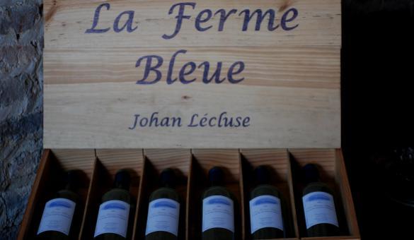 Le vignoble de La Ferme Bleue à Comines