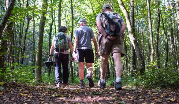 Sentiers GR - Chimay - randonnée - abbaye - trappiste