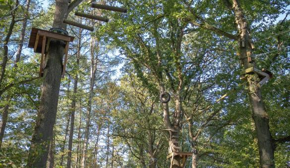 Parc accrobranche Dinant Aventure - Dinant Evasion - parc aventure - loisirs - piste d'escalade - saut dans le vide - paint-ball - lasergame