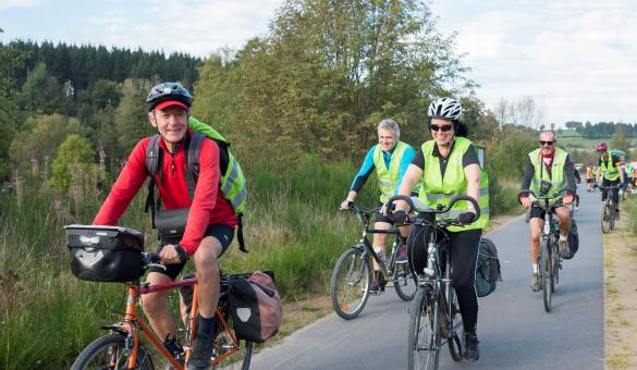 Promeneurs en vélo le long d'une route boisée