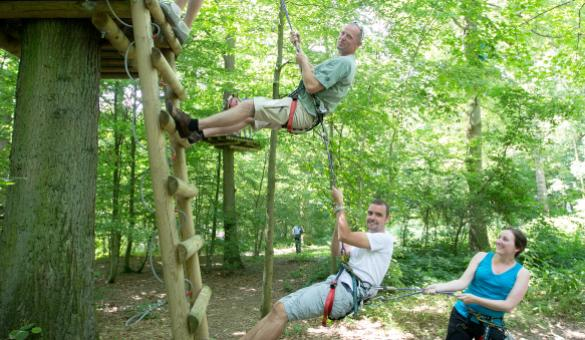 Explore the tree top trails in Natura Park, at the Eau d'Heure lakes