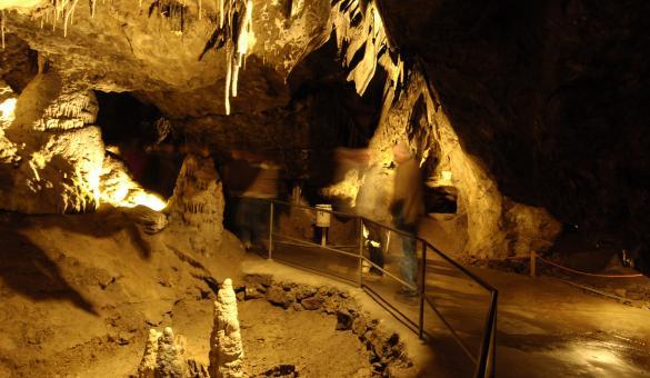 Venez découvrir les Grottes de Han à Han-sur-Lesse, en province de Namur