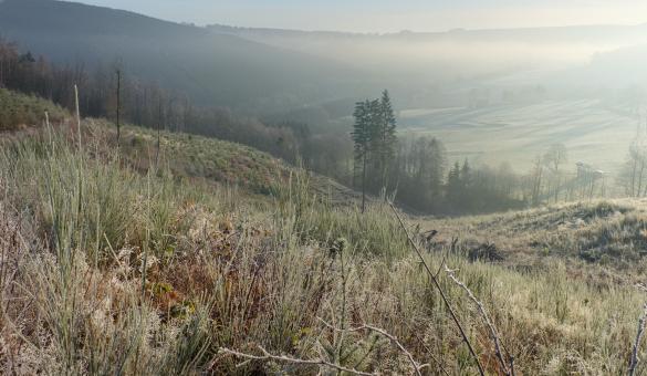 Magnifique panorama du village de Wanne