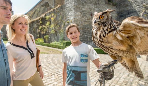 Assistez à un spectacle de fauconnerie dans le Château de Bouillon