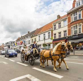 Waterloo - Chaussée de Bruxelles - Calèche