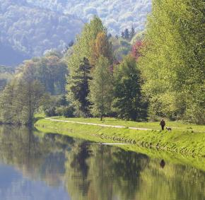Colonster - Vallée de l'Outre - promenade - arbres - reflet