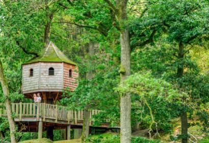 Les cabanes perchées dans les arbres du Domaine Provincial de Chevetogne