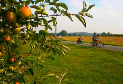 Balade des Pommiers - Herve - balade - vélo - nature