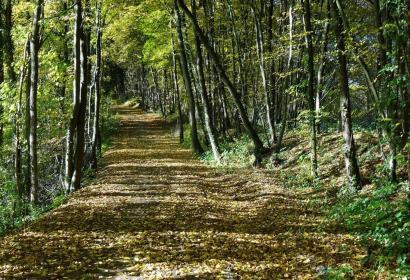 Balade - vélo - nature - Wallonie