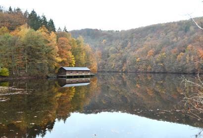 Barrage de Nisramont - Ardenne