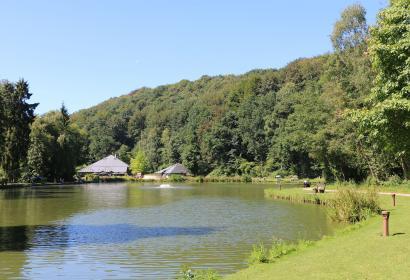 Domaine - provincial - Bois des Rêves - parc de loisirs - Ottignies