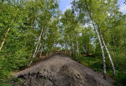 Bois du Cazier - Wallonie insolite - charbonnage - Marcinelle