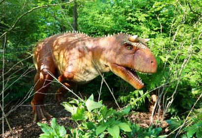 Pairi Daiza - Dinosaures - Carnotaurus