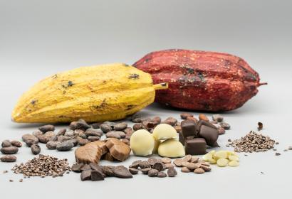 Cyril chocolat - chocolaterie artisanale - Samrée