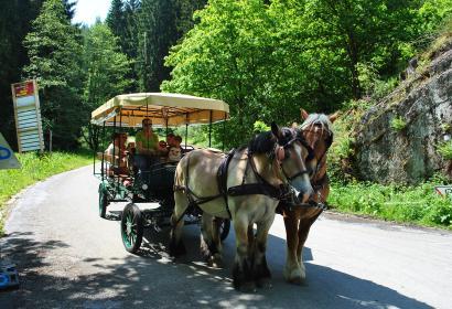 Ardenne - gourmet - carriage - fondue