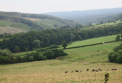 Activités nature - Ferme du Pré des Secrets - La Reid - Vue des champs