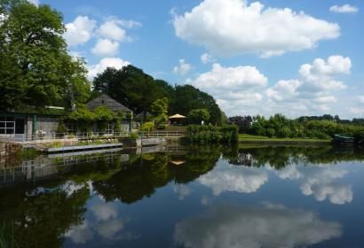 Lac de Bambois à Fosses-la-Ville, vue sur la terrasse