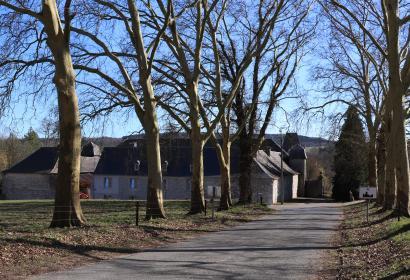 My - l'un des Plus Beaux Villages de Wallonie - drève des platanes