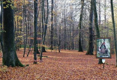 Petit Bois des Légendes ardennaises - Arboretum Bois Collignon