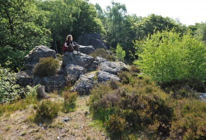 La Roche à l'Appel de Muno - curiosité géologique exceptionnelle - réserves naturelles - Ardenne - Gaume - forêt de Muno
