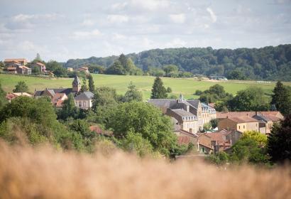 Wunderschöne Landschaft beim Dorf Torgny
