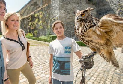 Watch a falconry demonstration at the Bouillon castle