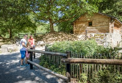 Découvrez la faune et la flore au Domaine des Grottes de Han
