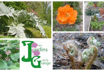 jardins - Grange - asbl - ellezelles