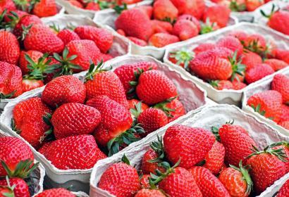 Marché bio - produits du terroir - fruit - fraises